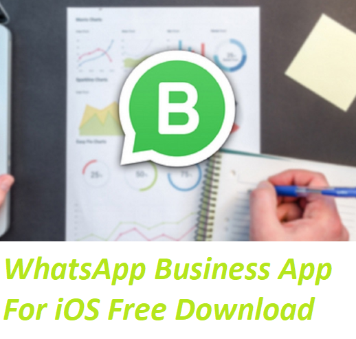 Whatsapp Business App For Ios Free Download Download Whatsapp Business App With Ease Here Moms All